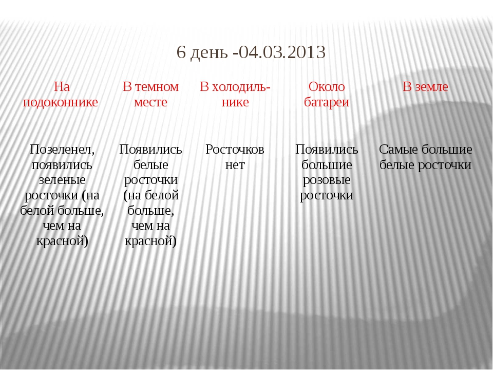 6 день -04.03.2013 Наподоконнике Втемномместе Вхолодиль-нике Околобатареи В з...