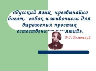 «Русский язык чрезвычайно богат, гибок и живописен для выражения простых есте