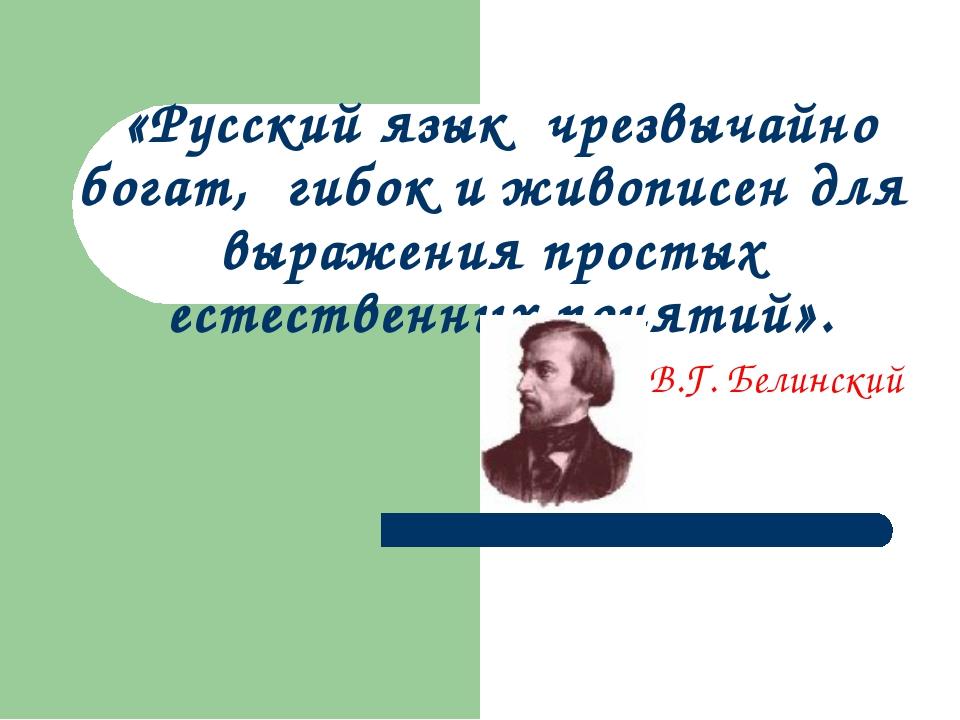«Русский язык чрезвычайно богат, гибок и живописен для выражения простых есте...