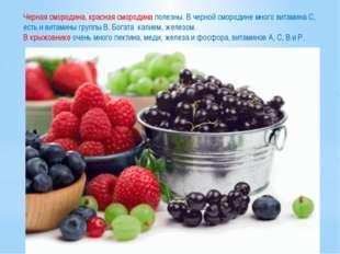 Черная смородина, красная смородина полезны. В черной смородине много витамин