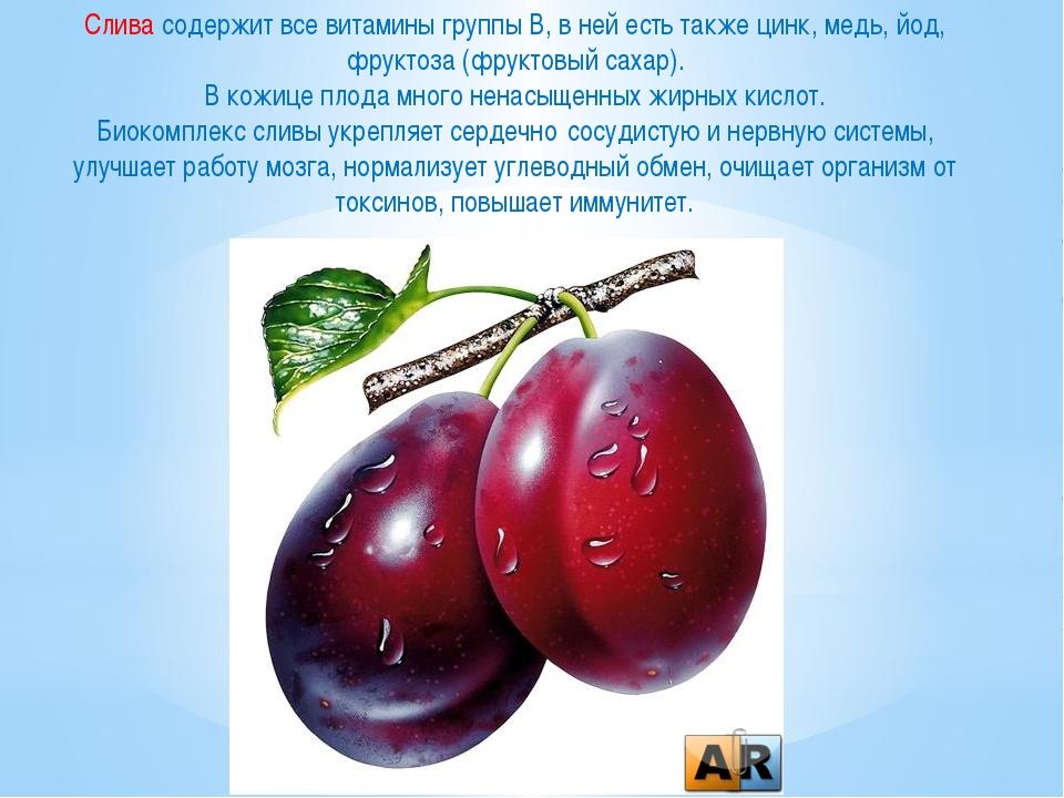 Слива содержит все витамины группы В, в ней есть также цинк, медь, йод, фрукт...