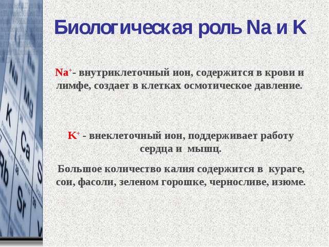 Биологическая роль Na и K Na+- внутриклеточный ион, содержится в крови и лимф...
