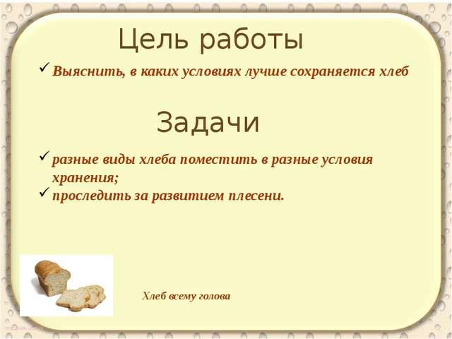 Цель работы Выяснить, в каких условиях лучше сохраняется хлеб Задачи разные...