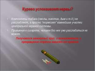 """Компоненты табака (смолы, никотин, дым и т.д.) не расслабляют, а просто """"торм"""