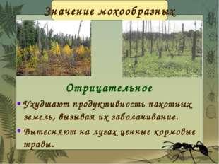 Отрицательное Ухудшают продуктивность пахотных земель, вызывая их заболачиван
