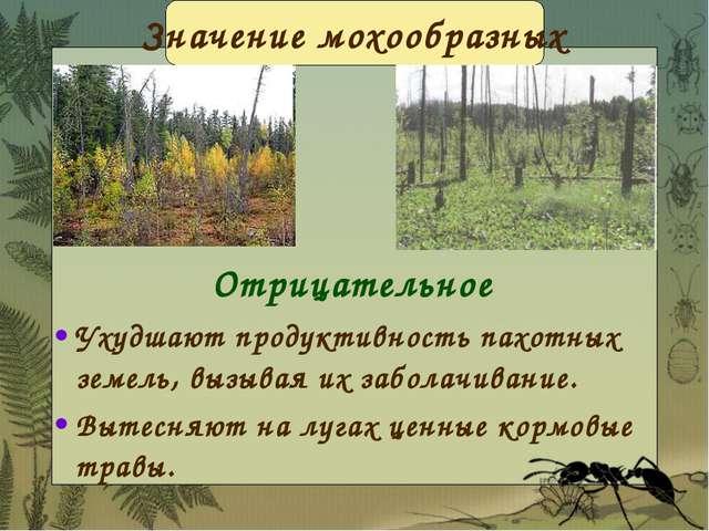 Отрицательное Ухудшают продуктивность пахотных земель, вызывая их заболачиван...
