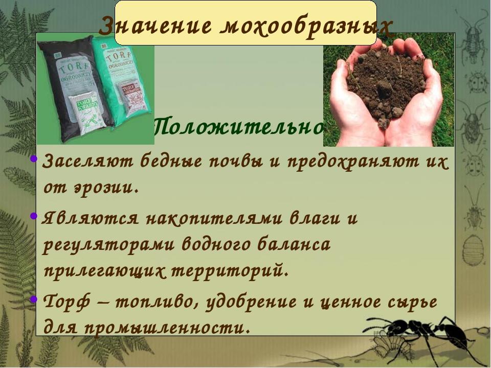 Положительное Заселяют бедные почвы и предохраняют их от эрозии. Являются нак...