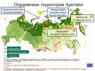 Охраняемые территории Арктики Национальный парк «Русская Арктика» Заповедник