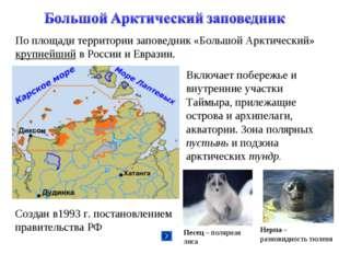 По площади территории заповедник «Большой Арктический» крупнейший в России и