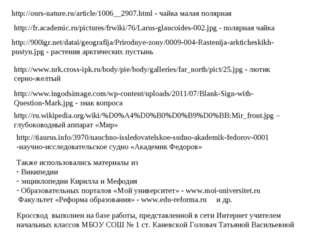 http://ours-nature.ru/article/1006__2907.html - чайка малая полярная http://f