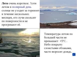 Лето очень короткое. Хотя летом в полярный день солнце не уходит за горизонт