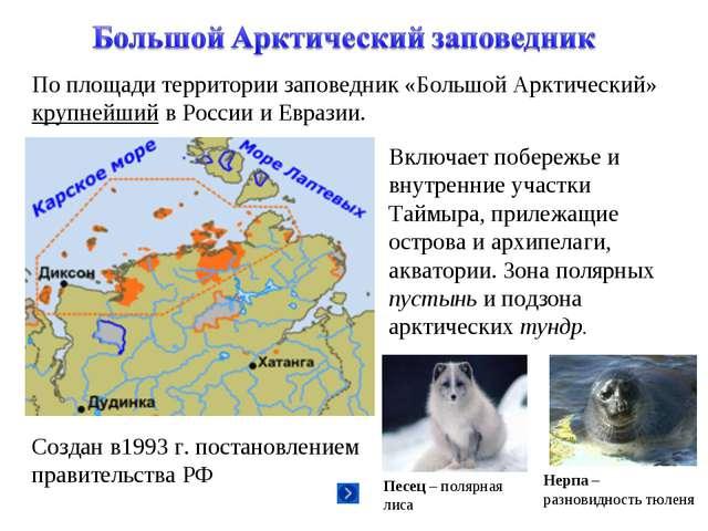 По площади территории заповедник «Большой Арктический» крупнейший в России и...