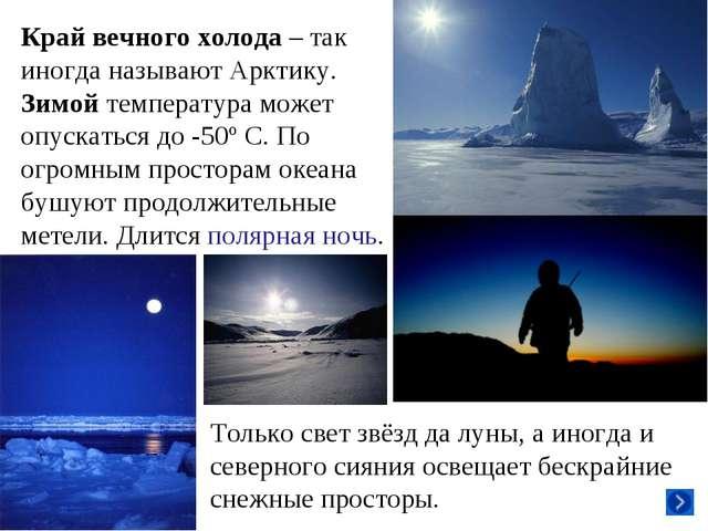 Край вечного холода – так иногда называют Арктику. Зимой температура может оп...