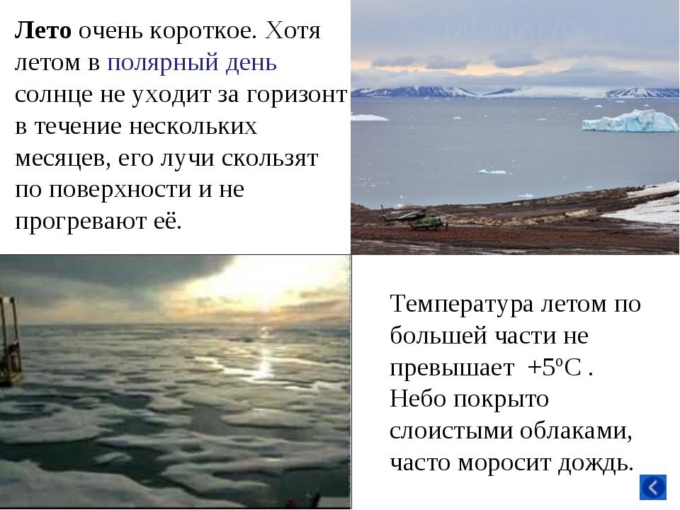 Лето очень короткое. Хотя летом в полярный день солнце не уходит за горизонт...