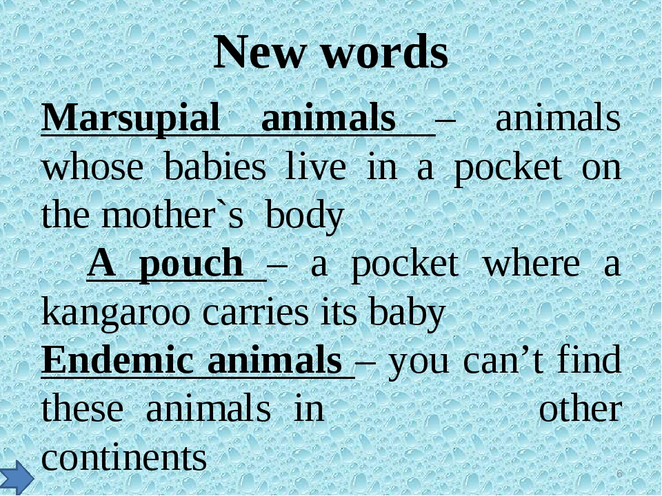 New words Marsupial animals – animals whose babies live in a pocket on the mo...