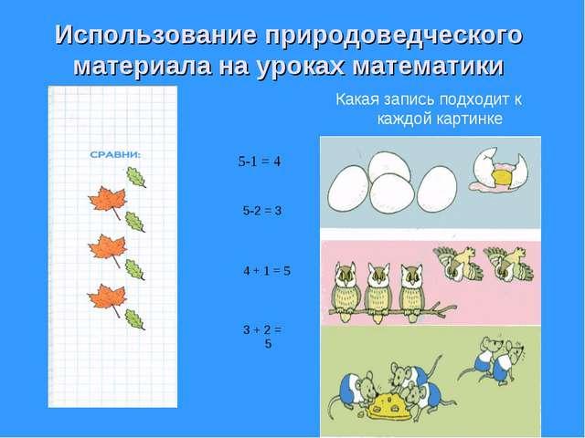 Использование природоведческого материала на уроках математики Какая запись п...