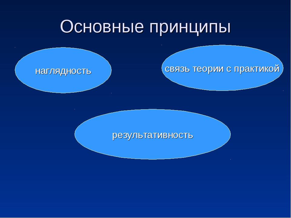 Основные принципы наглядность связь теории с практикой результативность