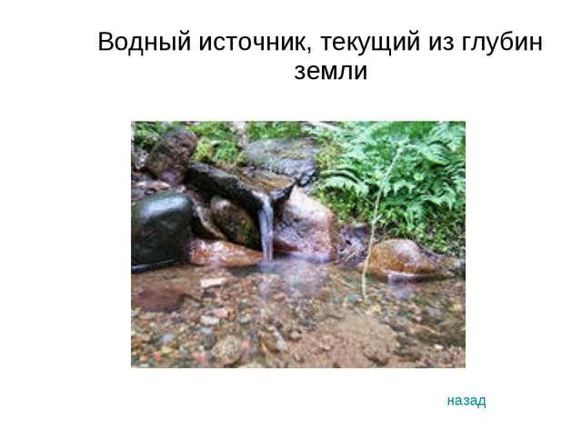 Водный источник, текущий из глубин земли назад