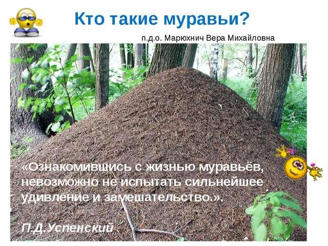 Кто такие муравьи? «Ознакомившись с жизнью муравьёв, невозможно не испытать с...