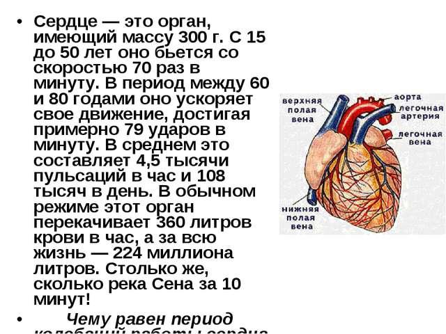 Сердце — это орган, имеющий массу 300 г. С 15 до 50 лет оно бьется со скорост...