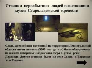 Стоянки первобытных людей в экспозиции музея Староладожской крепости Следы др