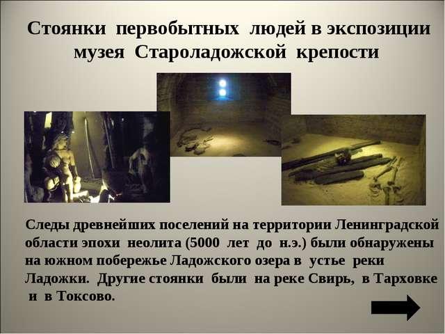 Стоянки первобытных людей в экспозиции музея Староладожской крепости Следы др...