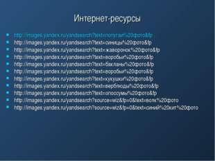 Интернет-ресурсы http://images.yandex.ru/yandsearch?text=попугаи%20фото&fp ht