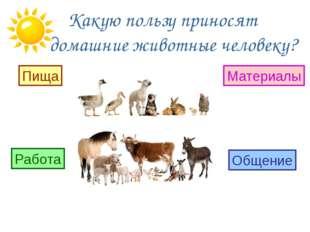 Какую пользу приносят домашние животные человеку? Пища Работа Материалы Обще