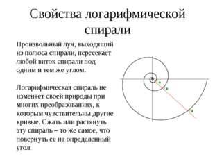 Свойства логарифмической спирали Произвольный луч, выходящий из полюса спира