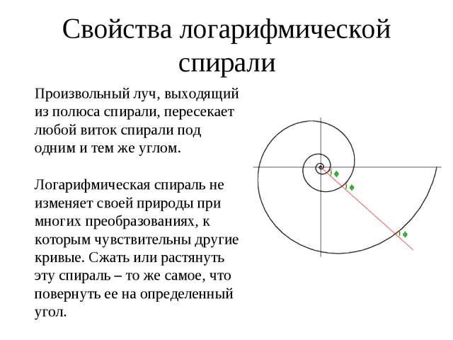 Свойства логарифмической спирали Произвольный луч, выходящий из полюса спира...
