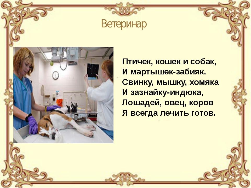 Ветеринар Птичек, кошек и собак, И мартышек-забияк. Свинку, мышку, хомяка И з...