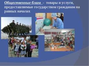 Общественные блага - товары и услуги, предоставляемые государством гражданам