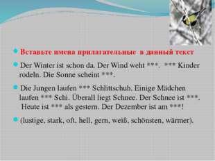 Вставьте имена прилагательные в данный текст Der Winter ist schon da. Der Wi