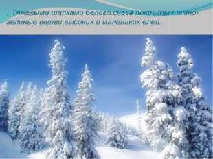 . Тяжелыми шапками белого снега покрыты темно-зеленые ветви высоких и маленьк