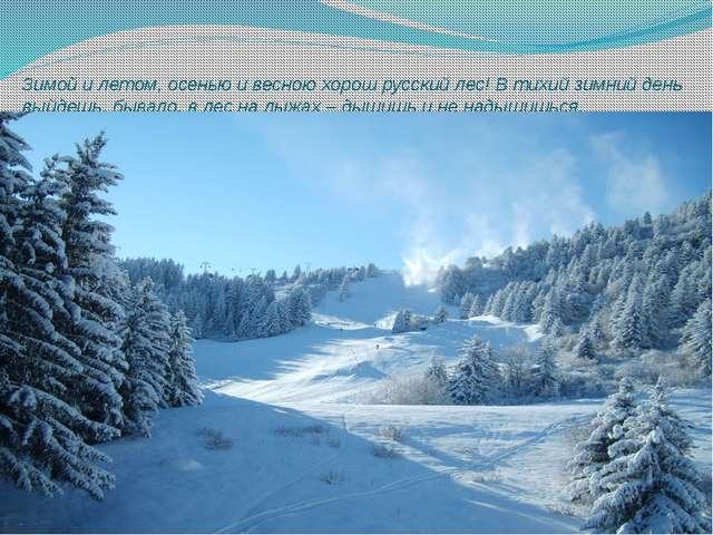 Зимой и летом, осенью и весною хорош русский лес! В тихий зимний день выйдешь...