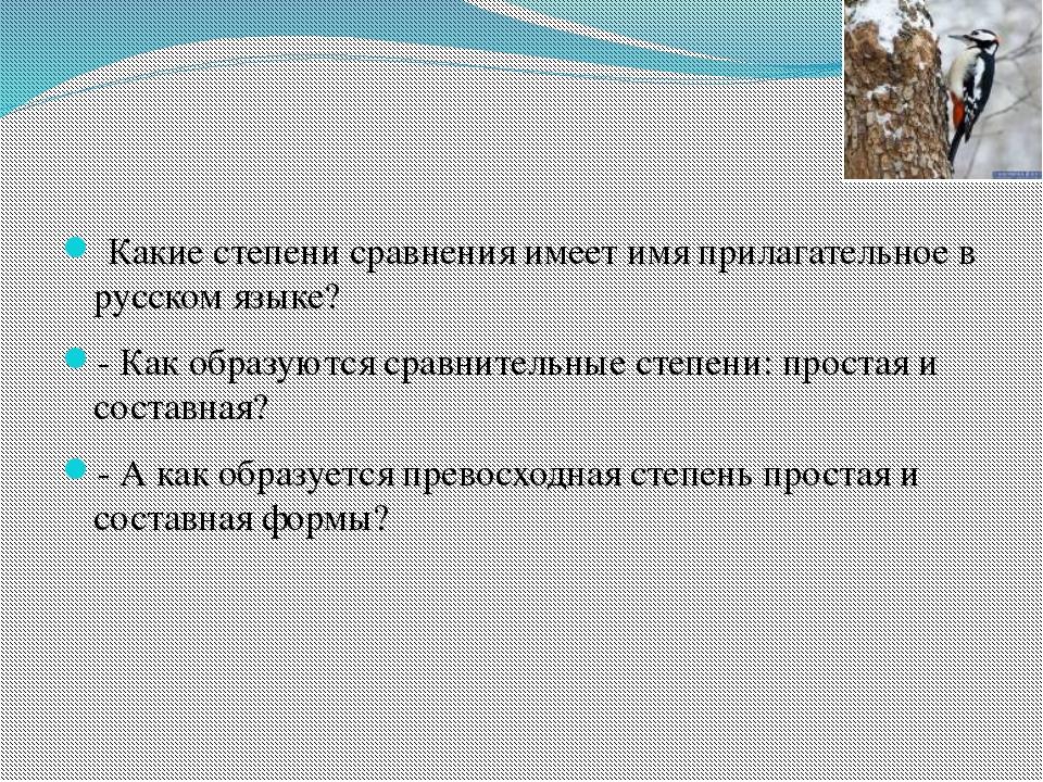 Какие степени сравнения имеет имя прилагательное в русском языке? - Как обра...