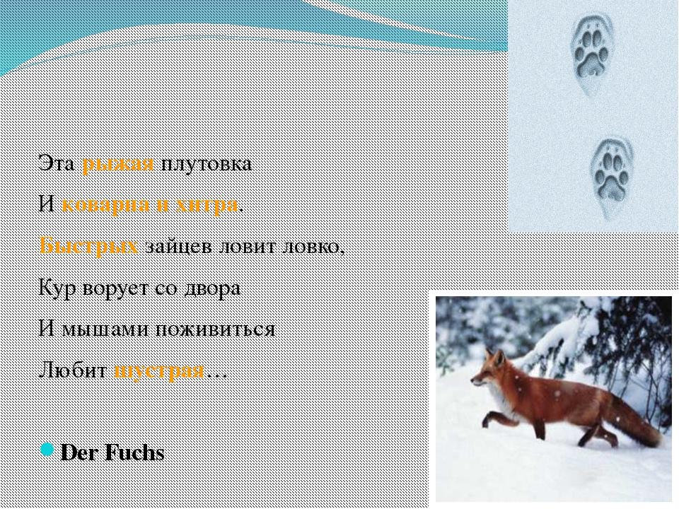 Эта рыжая плутовка И коварна и хитра. Быстрых зайцев ловит ловко, Кур ворует...