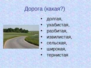 Дорога (какая?) долгая, ухабистая, разбитая, извилистая, сельская, широкая, т