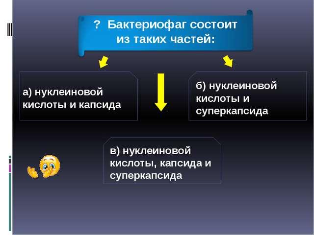 а) нуклеиновой кислоты и капсида б) нуклеиновой кислоты и суперкапсида в) нук...