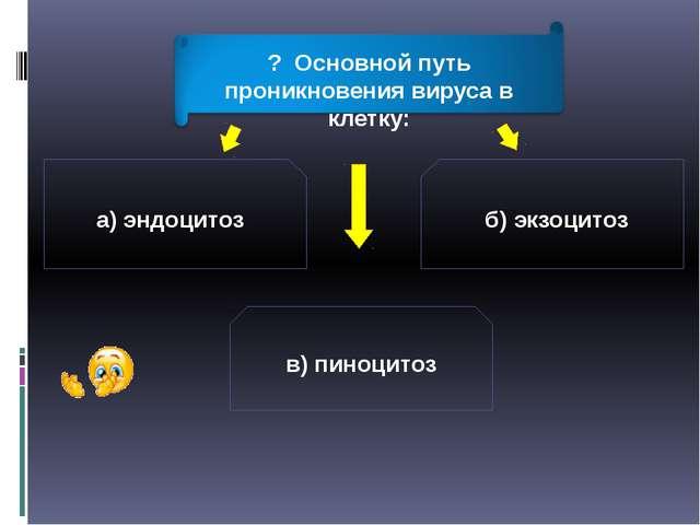 а) эндоцитоз б) экзоцитоз в) пиноцитоз ? Основной путь проникновения вируса в...