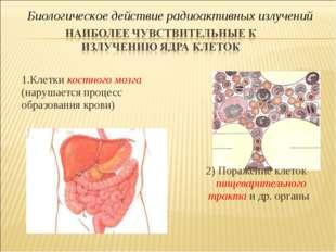 1.Клетки костного мозга (нарушается процесс образования крови) 2) Поражение