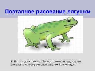 Поэтапное рисование лягушки 5 Вот лягушка и готова Теперь можно её разукрасит