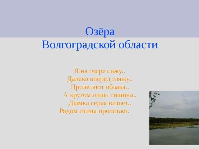 Озёра Волгоградской области Я на озере сижу.. Далеко вперёд гляжу.. Пролетают...
