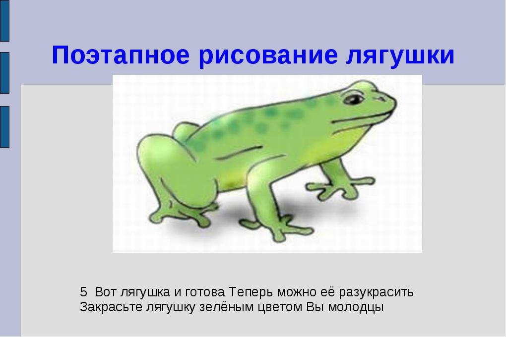 Поэтапное рисование лягушки 5 Вот лягушка и готова Теперь можно её разукрасит...