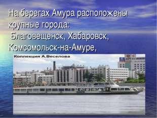 На берегах Амура расположены крупные города: Благовещенск, Хабаровск, Комсомо