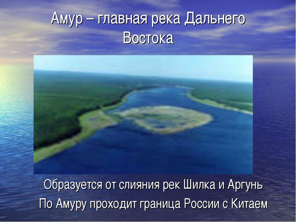 Амур – главная река Дальнего Востока Образуется от слияния рек Шилка и Аргунь...