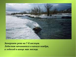 Замерзает река на 7-8 месяцев. Ледостав начинается в начале ноября, а ледоход