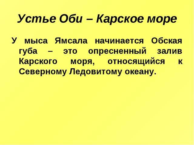 Устье Оби – Карское море У мыса Ямсала начинается Обская губа – это опресненн...