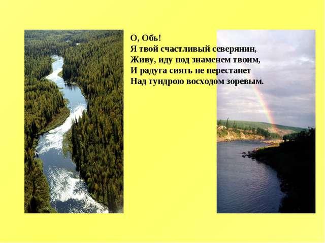 О, Обь! Я твой счастливый северянин, Живу, иду под знаменем твоим, И радуга с...