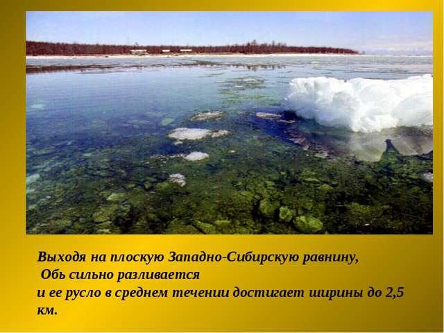 Выходя на плоскую Западно-Сибирскую равнину, Обь сильно разливается и ее русл...